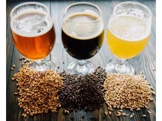 Крупнейшие пивоваренные заводы переходят на смазочные материалы EFELE!