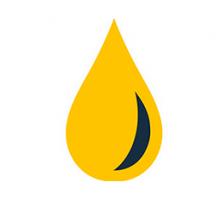 Prolong® Diesel Fuel Treatment - уход за  дизельной топливной системой 946 мл